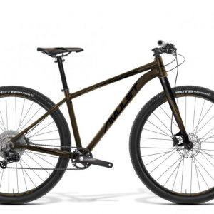 AMULET 29 Youngster carbon 1.12, gold-black matt/black matt, 2021
